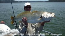 Nice Jewie from the Hawkesbury River Sydney